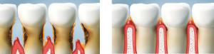 periodontolog